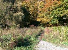 Herbst_15.jpg