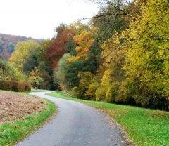 Herbst_3.jpg
